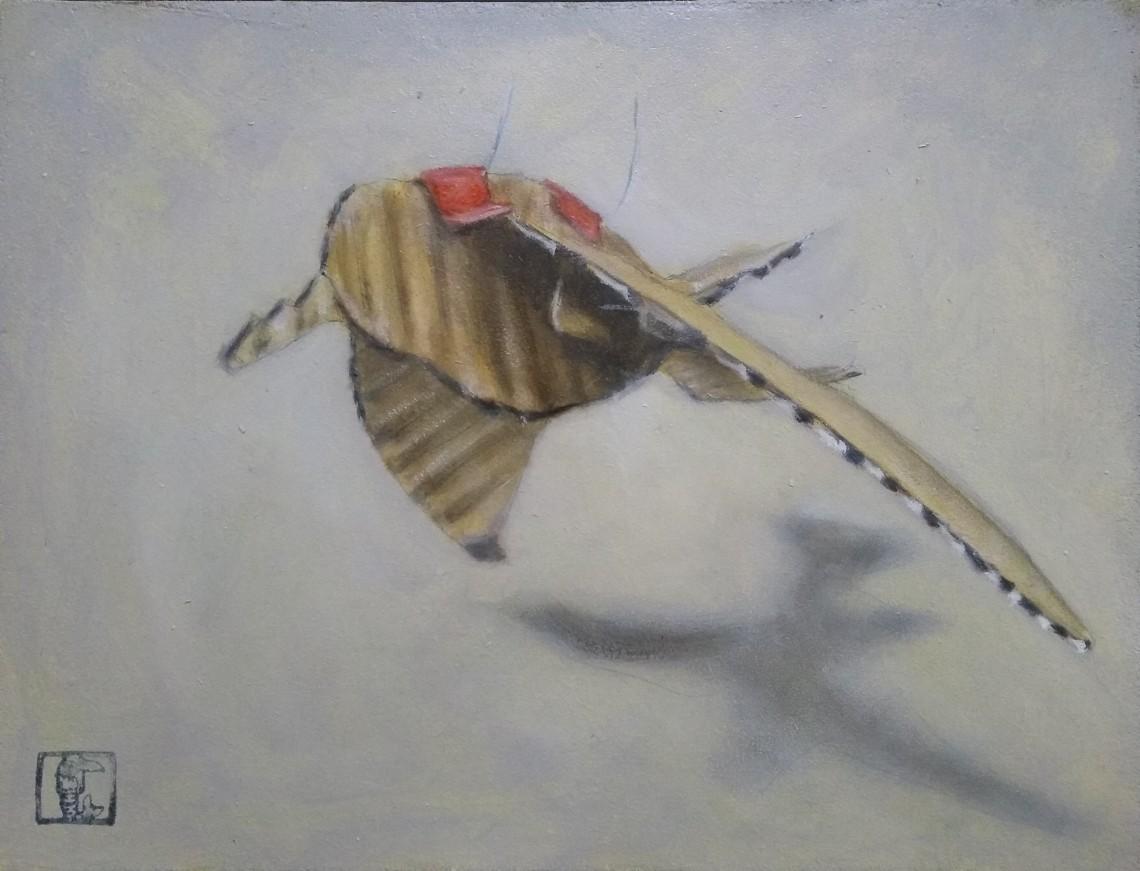 Sanderling no 3